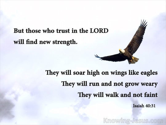 Isaiah 40:31 But those who wait upon the LORD will renew ...