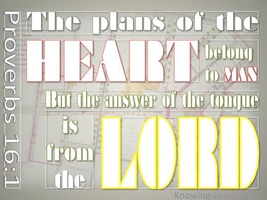 Wonderfully made bible study