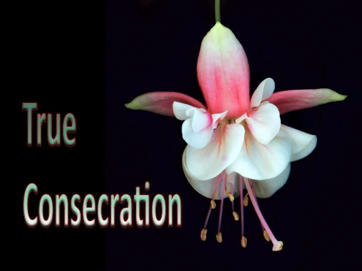 True Consecration