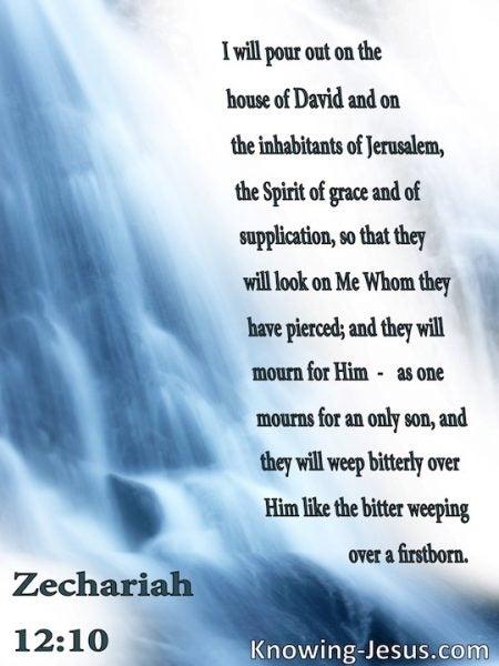 Bible tribulation study of