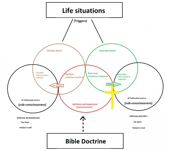 spiritual growth chart